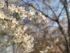 春はしっかり紫外線ケアを!